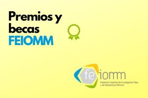 Premios y Becas FEIOMM: Premio a la mejor publicación sobre Vitamina D, Premio de apoyo a la revista ROMM y Becas a los mejores trabajos sobre FLS