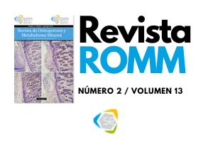 Revista ROMM (1)