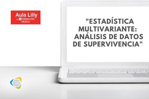 aula lilly web (1)